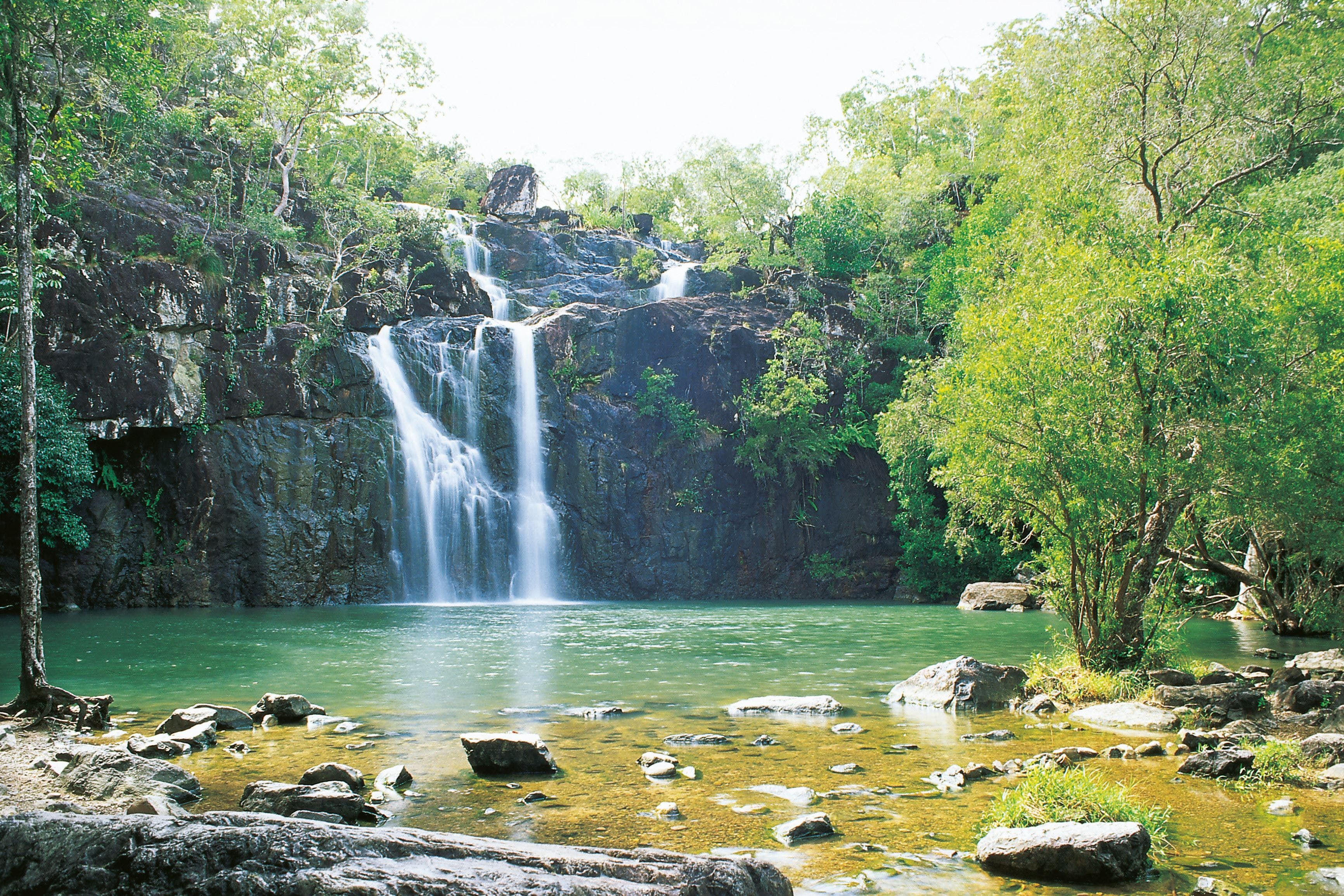 Cedar Creek Falls - Accommodation Gold Coast