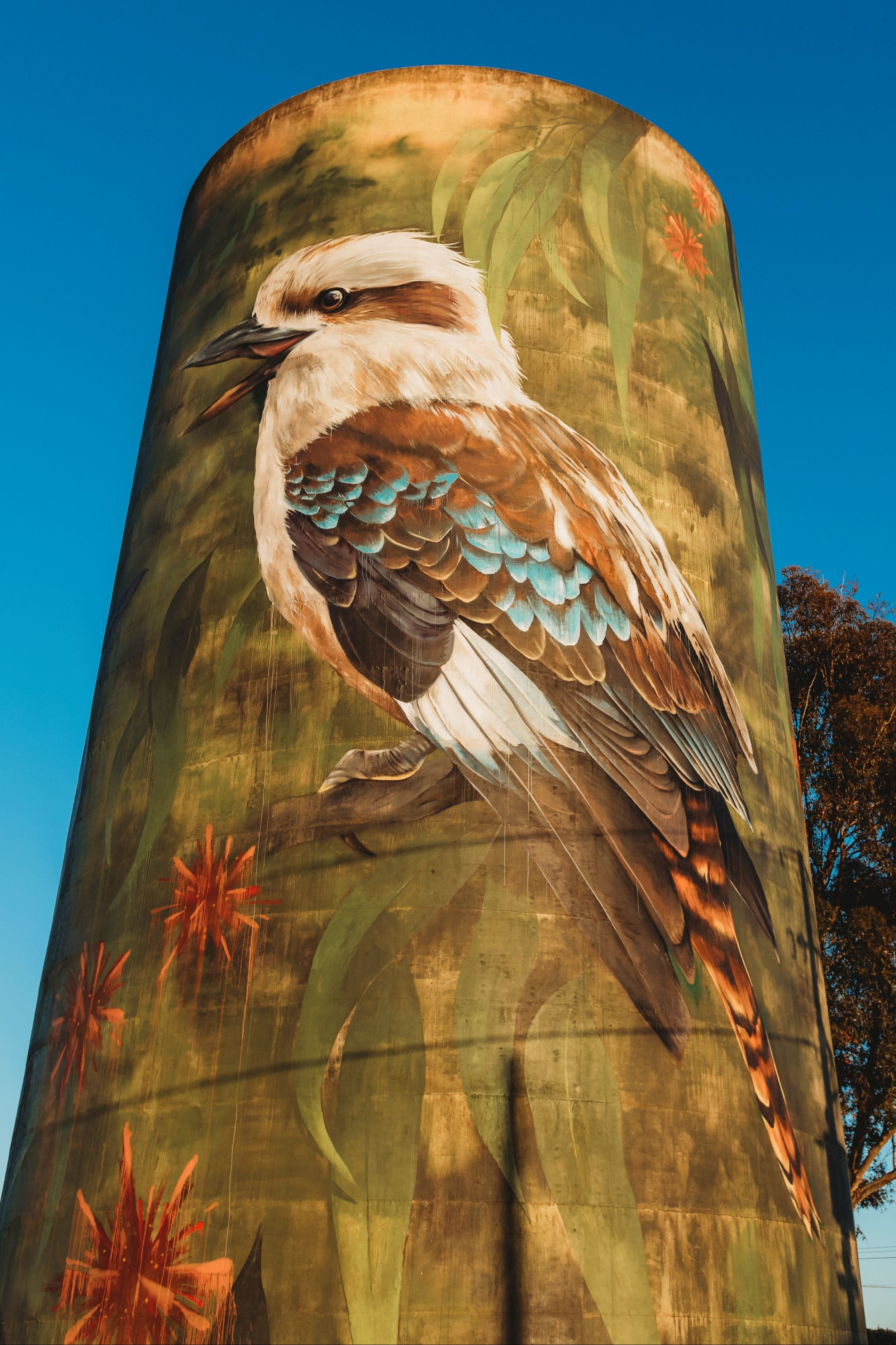 Deniliquin Water Tower Mural - Accommodation Gold Coast