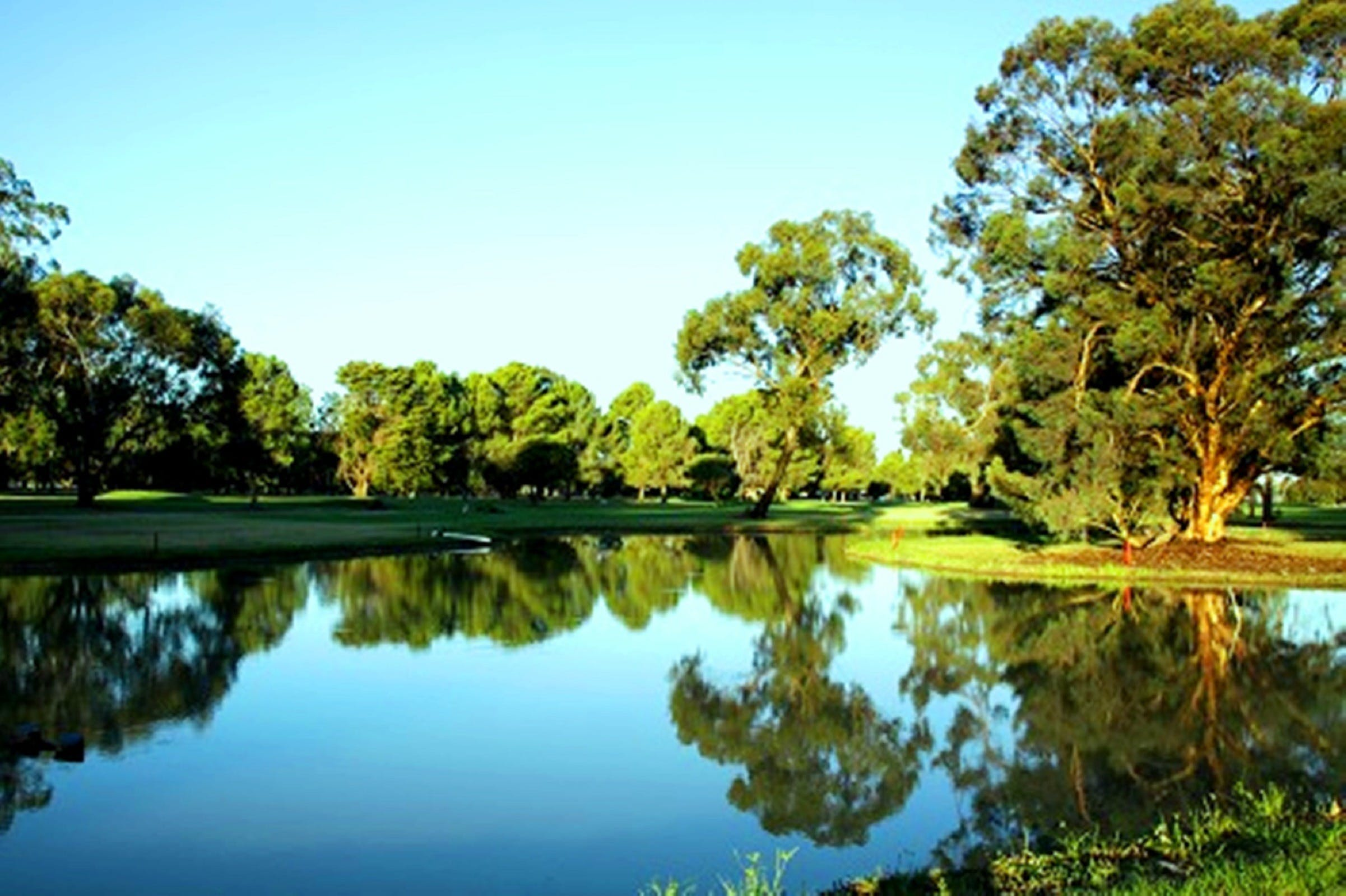 Finley Golf Club - Accommodation Gold Coast