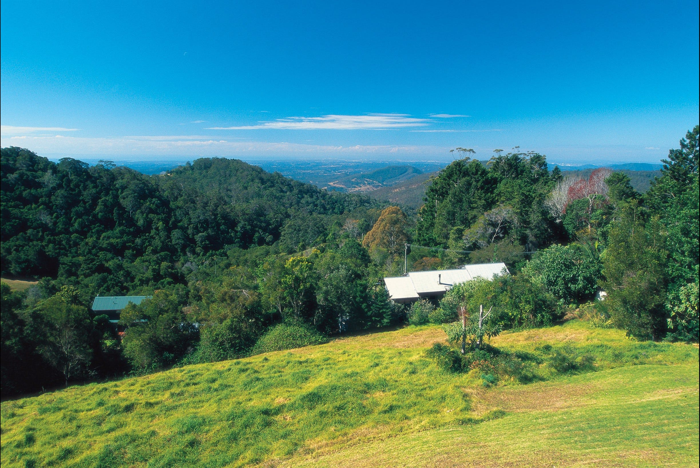 Mount Glorious - Accommodation Gold Coast