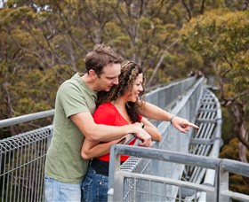 Valley of the Giants Tree Top Walk - Accommodation Gold Coast