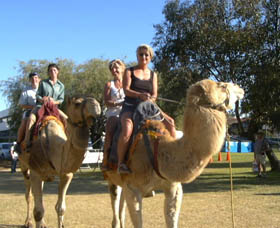 Calamunnda Camel Farm - Accommodation Gold Coast
