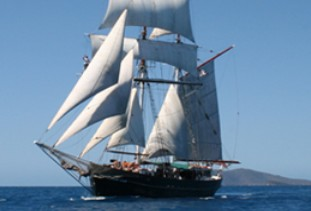 Australian Tallship Cruises - Accommodation Gold Coast