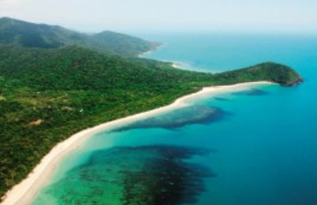 Jungle Tours and Trekking - Accommodation Gold Coast
