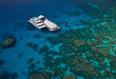 Great Adventures Reef and Green Island Cruises - Accommodation Gold Coast