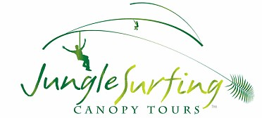 Jungle Surfing Canopy Tours and Jungle Adventures Nightwalks - Accommodation Gold Coast