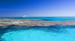 Reef Jet Cruises - Accommodation Gold Coast