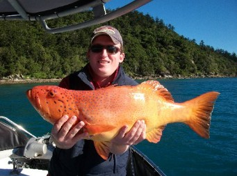 Gone Fishing by Coral Sea Fishing Charters Airlie Beach - Accommodation Gold Coast