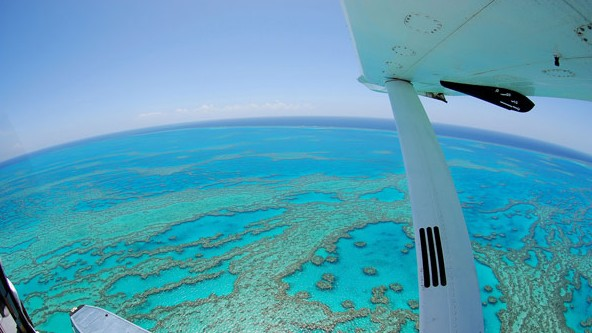 Air Whitsunday Day Tours - Accommodation Gold Coast