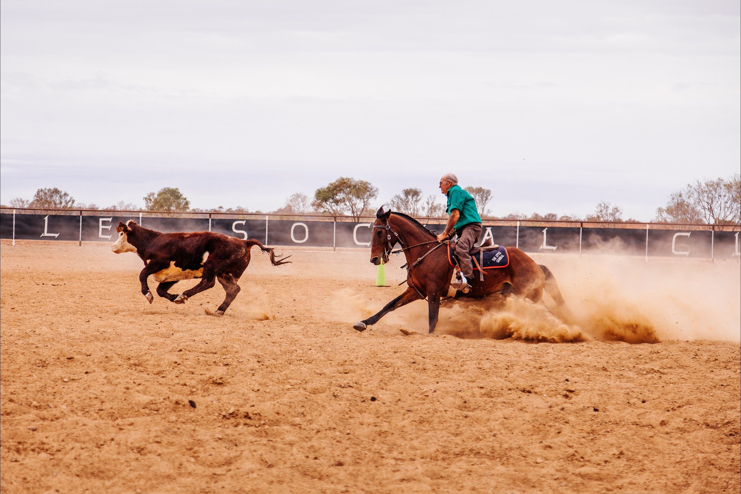 Birdsville Campdraft  Rodeo and Bronco Branding - Accommodation Gold Coast