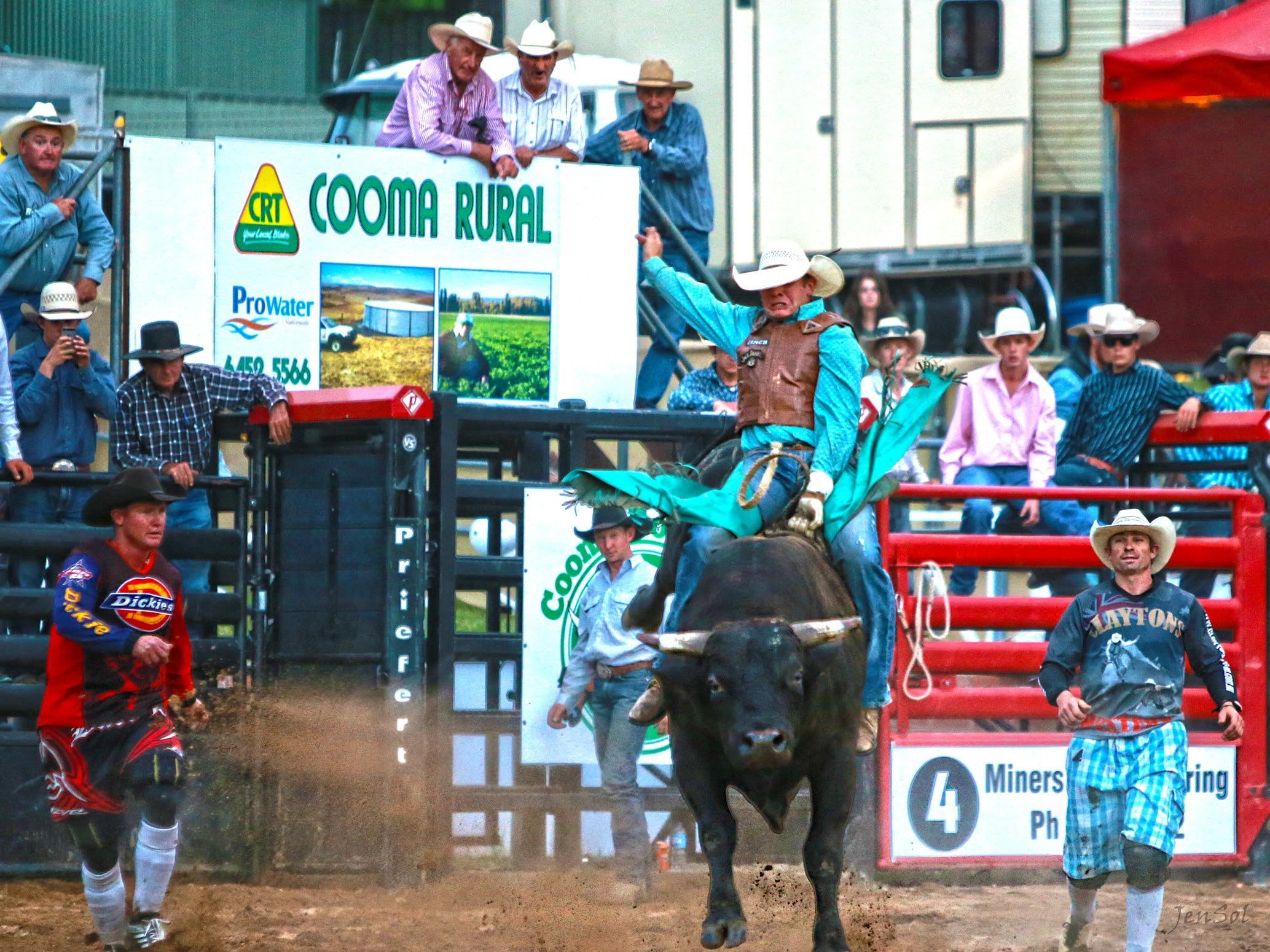 AgriWest Cooma Rodeo - Accommodation Gold Coast